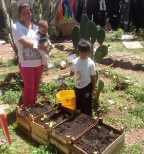 En Norias de Paso Hondo HUERTOS FAMILIARES EN ZONAS DE MARGINACIÓN