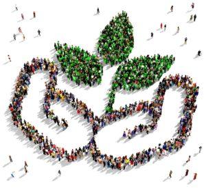 SENADO/ Urge incrementar formación y  capacidad científica para proteger el ambiente