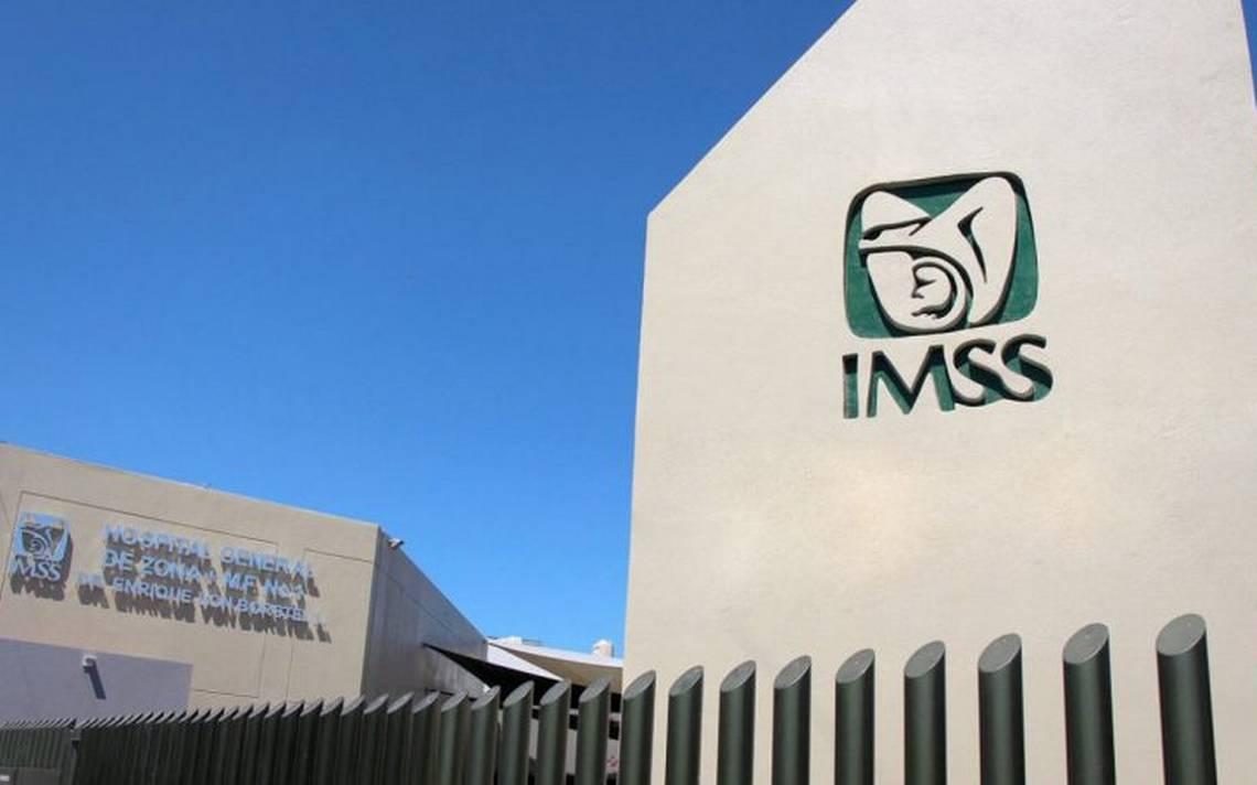 Otorga IMSS más